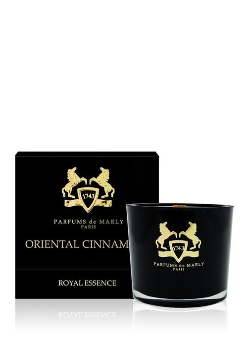 Oriental Cinnamon Mum