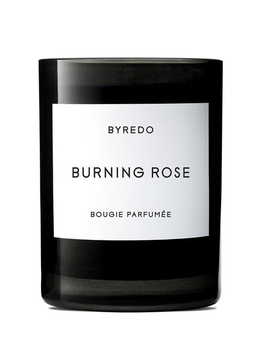 Burning Rose 240 gr Mum