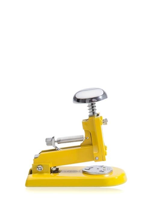 Sarı Küçük Zımba