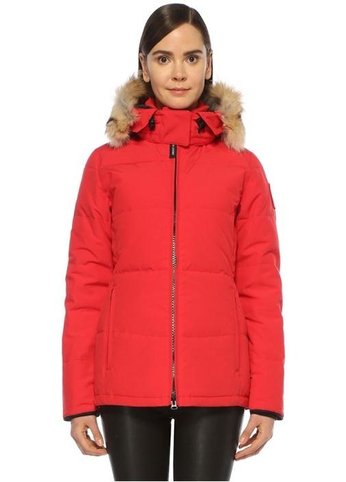 Chelsea Kırmızı Palto
