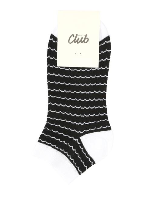 Siyah Dalgalı Kadın Soket Çorap