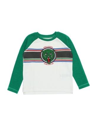 Zadig&Voltaire Erkek Çocuk Yeşil Logo Baskılı Uzun Kollu -shirt 10 Yaş Ürün Resmi