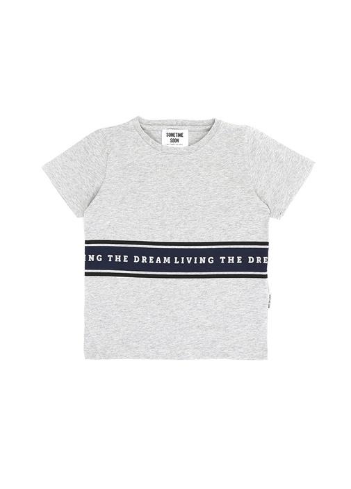Living Gri Şeritli Baskılı Erkek Çocuk T-shirt