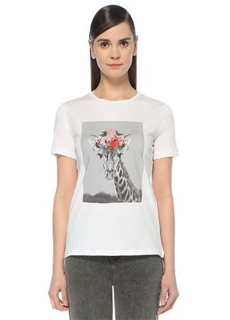 Beyaz Önü Zebra Baskılı Çiçek Nakışlı T-shirt