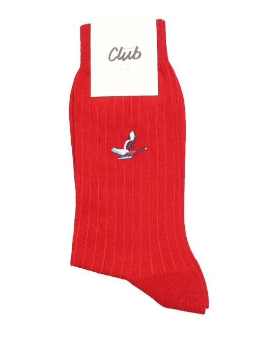 Kırmızı Logo Jakarlı Ribli Erkek Çorap