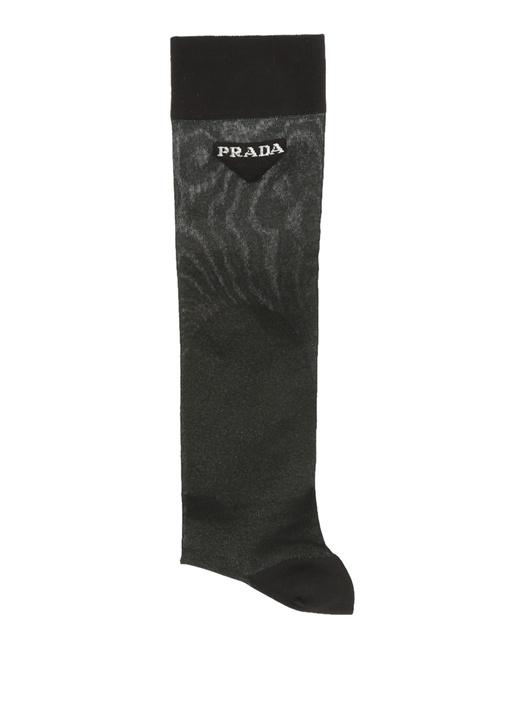 Siyah Logo Jakarlı Transparan Kadın Çorap