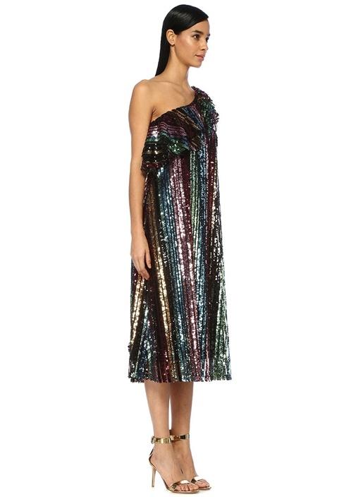 Amelia Tek Kollu İşlemeli Volanlı Midi Elbise