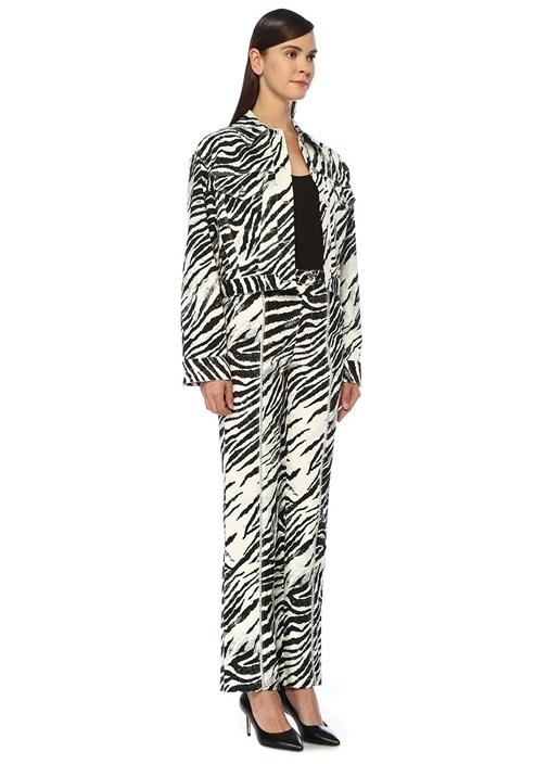 Zebra Desenli Sırtı İşleme Detaylı Denim Ceket