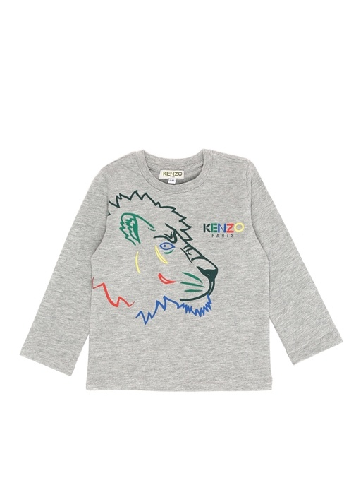 Geordan Gri Baskılı Erkek Çocuk T-shirt