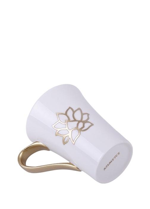 Lotus Kupa