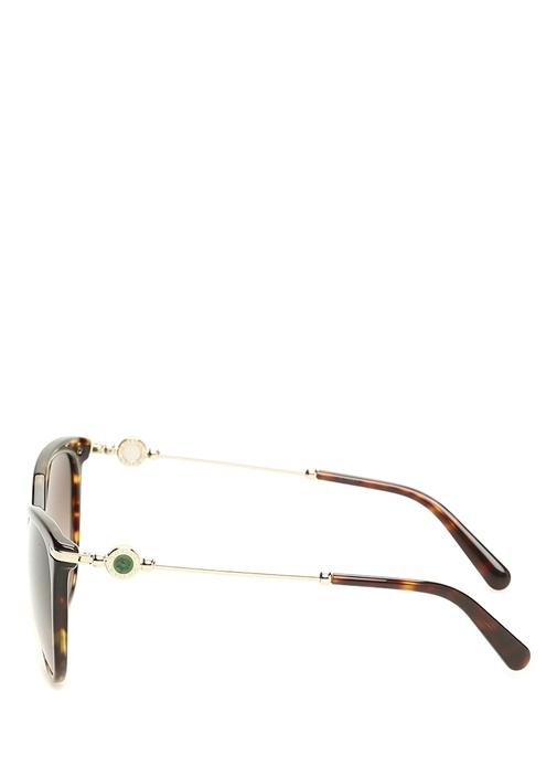 Kahverengi Turtle Desenli Kadın Güneş Gözlüğü