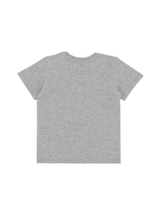 Gri Melanj Kaplan Baskılı Erkek Çocuk T-shirt