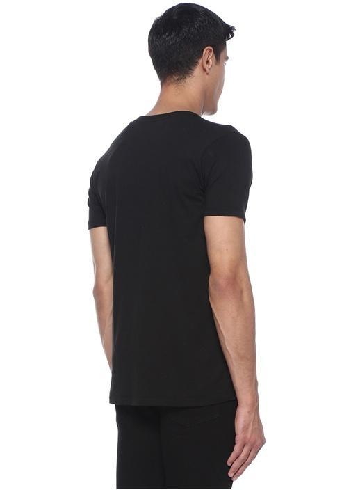 Splendido Siyah Bisiklet Yaka Baskılı Basic Tshirt