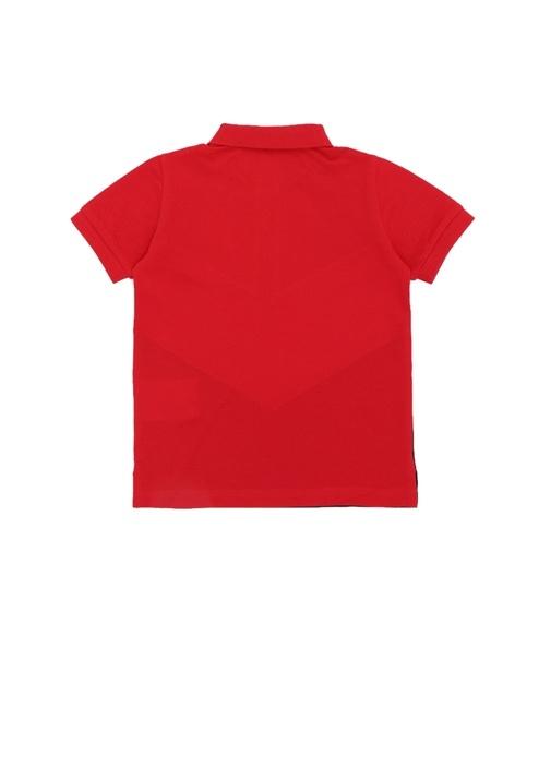 Kırmızı Lacivert Polo Yaka Erkek Çocuk T-shirt