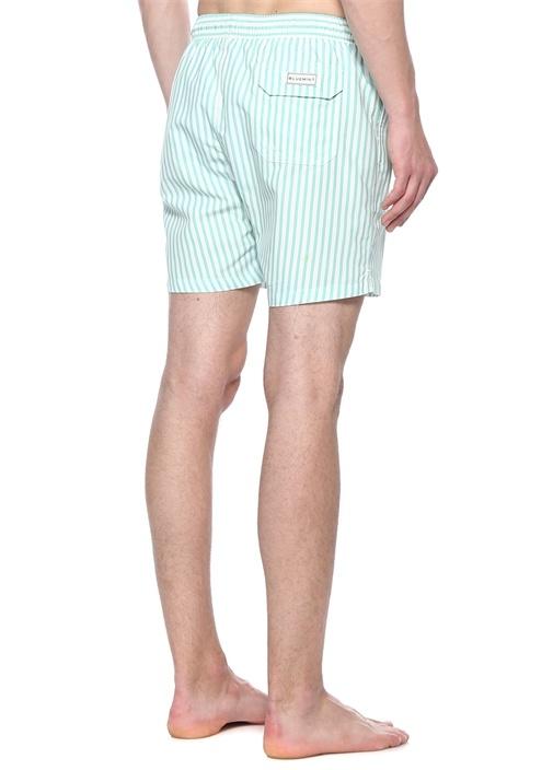 Regular Fit Arthus Yeşil Beyaz Çizgili Mayo