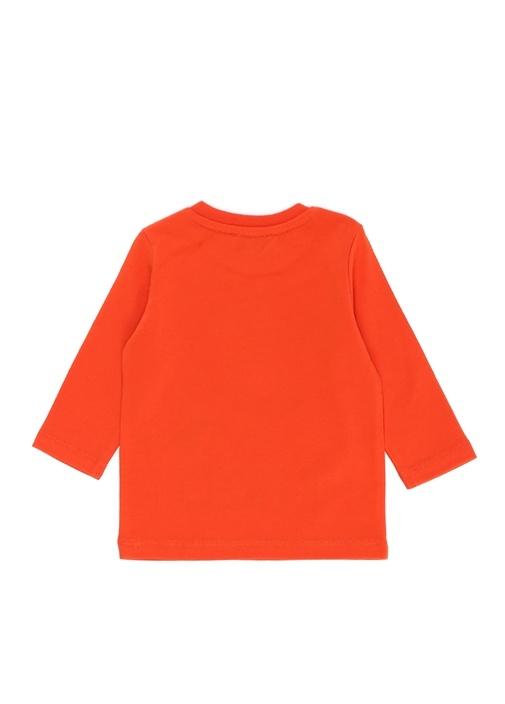 Turuncu Ejderha Baskılı Erkek Bebek Sweatshirt
