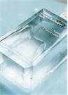 Aqua Universalis 200 ml EDT Parfüm