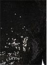 Rezzan Siyah Payetli Sırtı Açık Maksi Elbise
