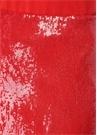 Kırmızı Payet İşlemeli Mini Etek