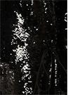 Siyah İşlemeli Uzun Kol Midi Anvelop Elbise