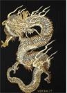 Siyah Gold Ejderha Nakışlı Kazak