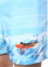 Normal Bel Mavi Sörf Baskılı Şort