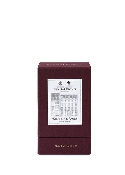 Kensington Amber EDP 100 ml Parfüm
