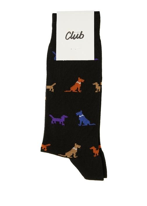 Siyah Köpek Desen Jakarlı Erkek Çorap