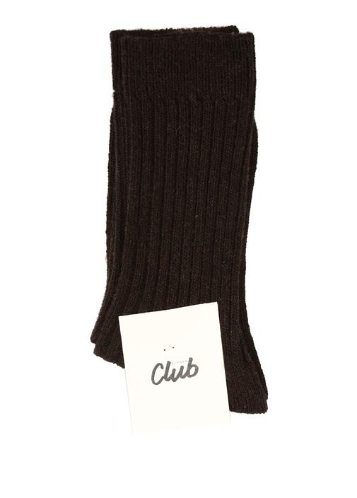 Kahverengi Fitilli Kadın Çorap